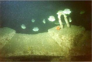 コーケン魚礁ブロック(コンクリート人工魚礁)施行例1