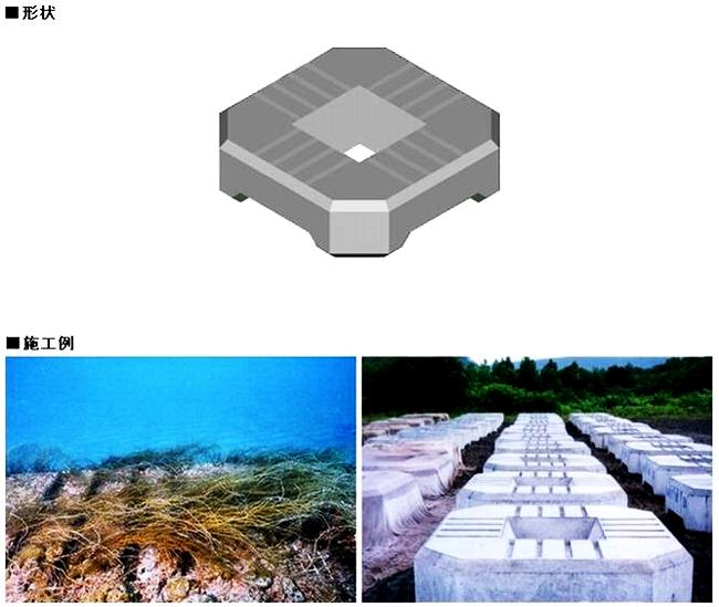 セッカブロックAM形(藻礁用溝付根固被覆ブロック)
